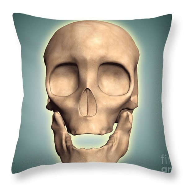 Conceptual Image Of Human Skull, Front Throw Pillow by Stocktrek Images