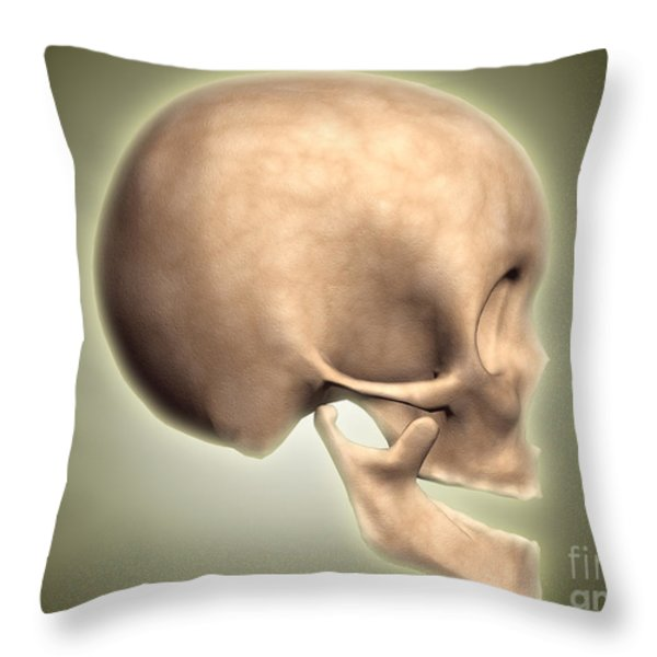 Conceptual Image Of Human Skull, Side Throw Pillow by Stocktrek Images
