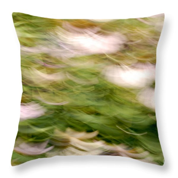 ConeFlowers in the Breeze Throw Pillow by Paul W Faust -  Impressions of Light