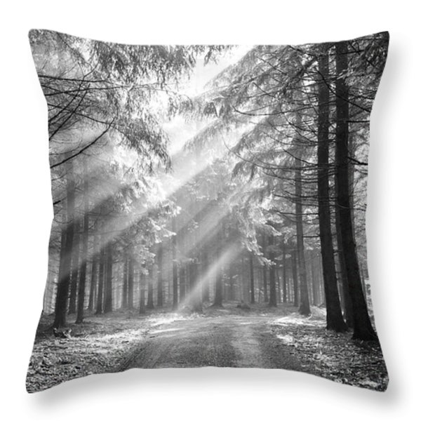 Coniferous Forest In Early Morning Throw Pillow by Michal Boubin