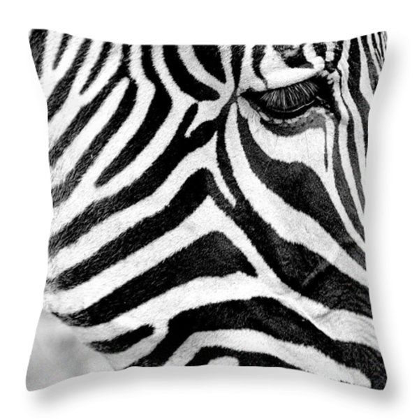 Contextual Patterns Throw Pillow by Trever Miller