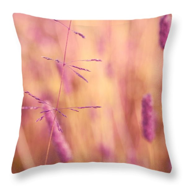 Contrario - P01 Throw Pillow by Variance Collections