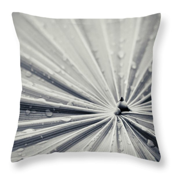 Convergence Throw Pillow by Adam Romanowicz