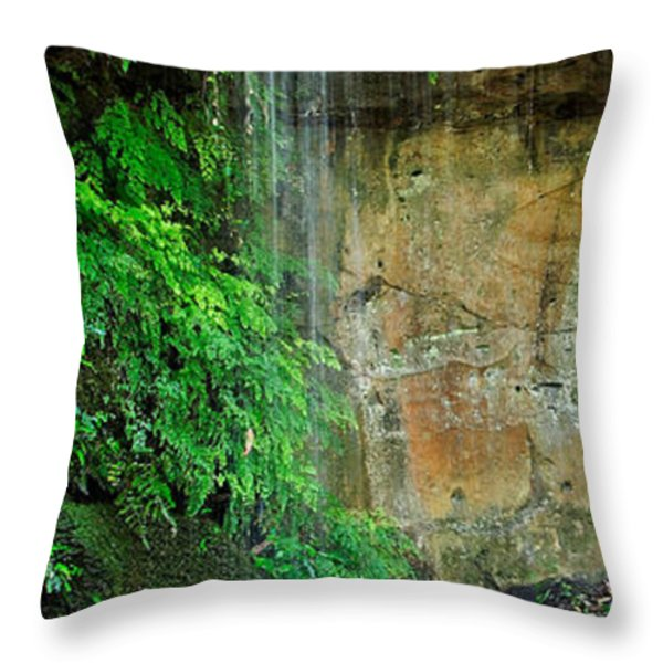Cool and Refreshing Throw Pillow by Kaye Menner