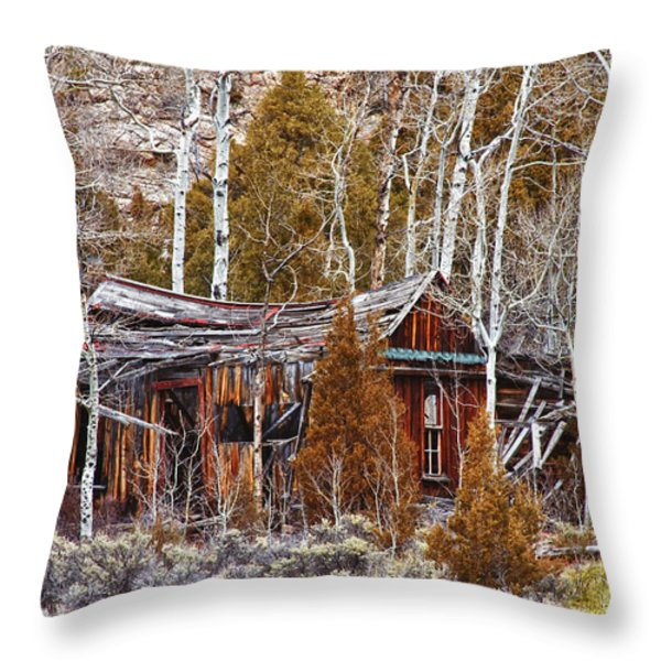 Cool Colorado Rural Rustic Rundown Rocky Mountain Cabin  Throw Pillow by James BO  Insogna