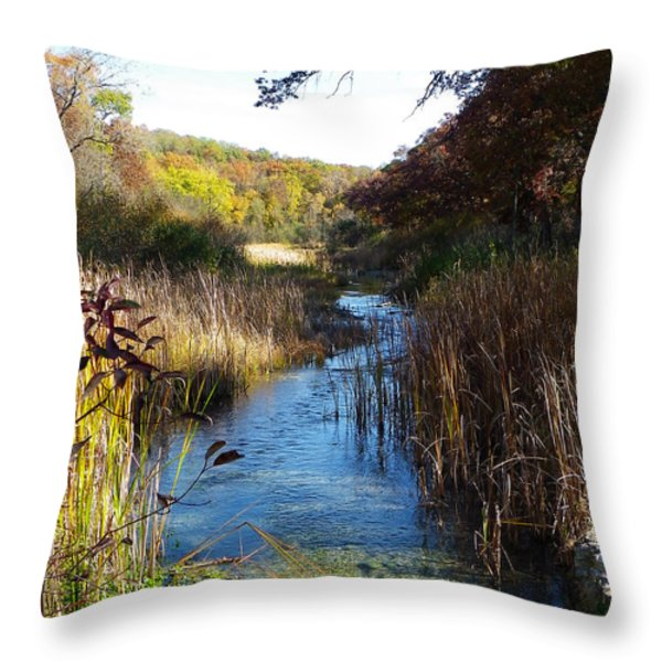 Cool Wisconsin Stream... Throw Pillow by Tim Fillingim