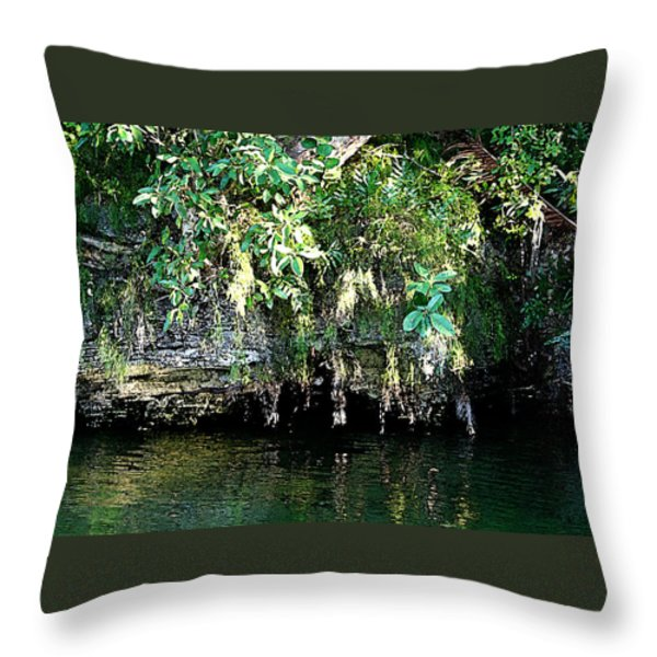 Coral Bluffs Throw Pillow by Janis Lee Colon