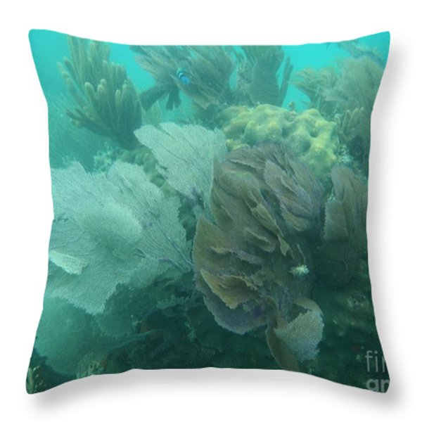 Coral Fans Throw Pillow by Adam Jewell