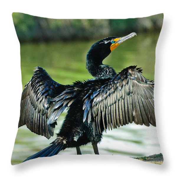 Cormorant Drying Wings Throw Pillow by  Bob and Nadine Johnston