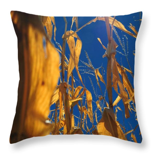 Corn Throw Pillow by Todd and candice Dailey