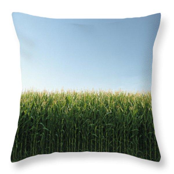 Corn Field And Sky, Abbotsford, British Throw Pillow by Bert Klassen