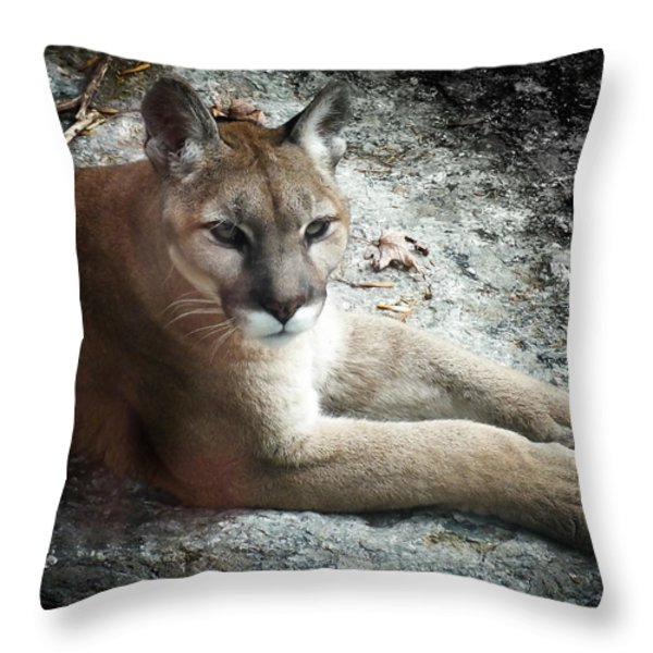 Cougar Country Throw Pillow by Karen Wiles