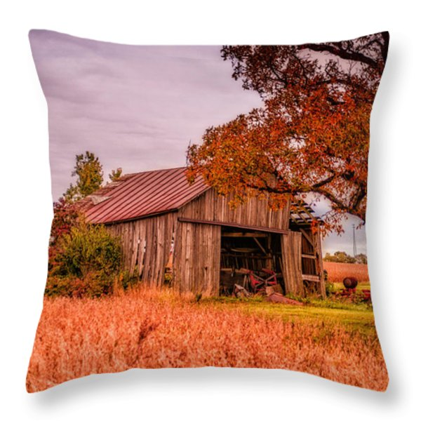 Country Barn Throw Pillow by Mary Timman
