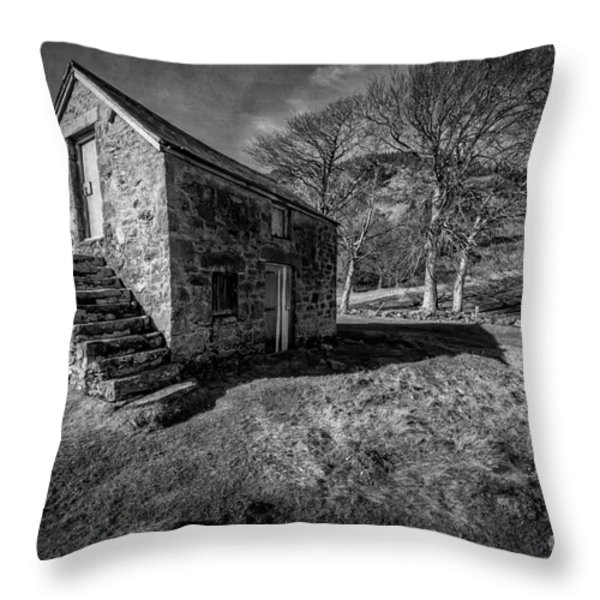 Country Cottage V2 Throw Pillow by Adrian Evans