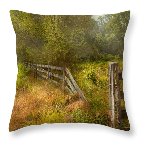 Country - Landscape - Lazy meadows Throw Pillow by Mike Savad