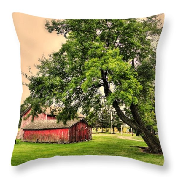 Country Scene Throw Pillow by Kathleen Struckle