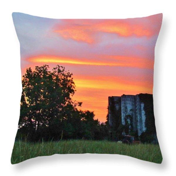 Country Sky Throw Pillow by Cynthia Guinn