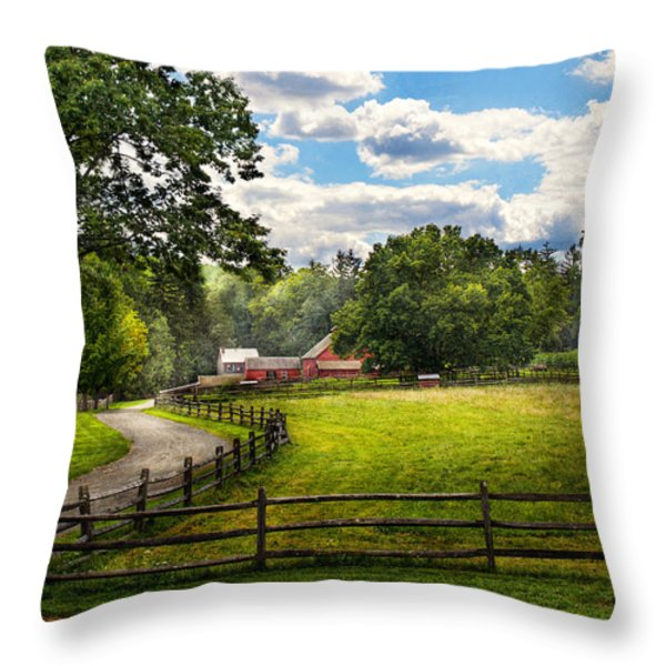 Country - The pasture  Throw Pillow by Mike Savad