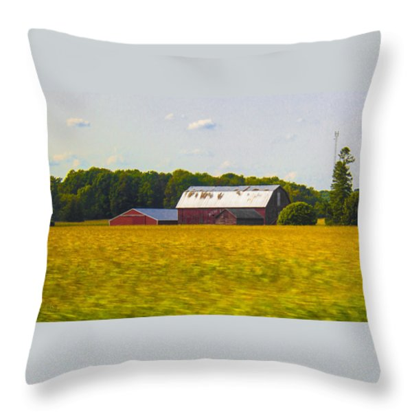 Countryside Landscape With Red Barns Throw Pillow by Ben and Raisa Gertsberg