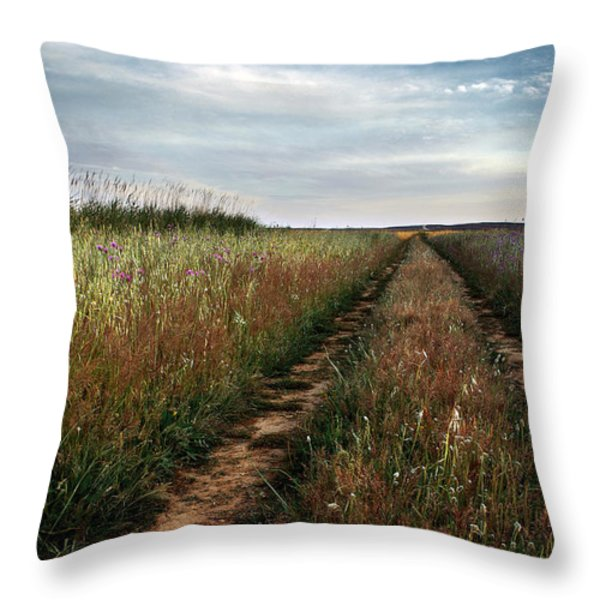 Countryside tracks Throw Pillow by Carlos Caetano