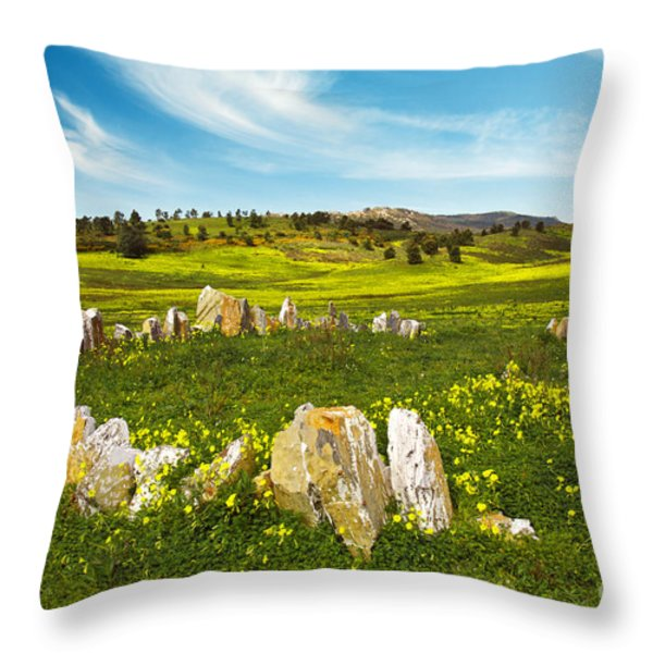 Countryside with Stones Throw Pillow by Carlos Caetano