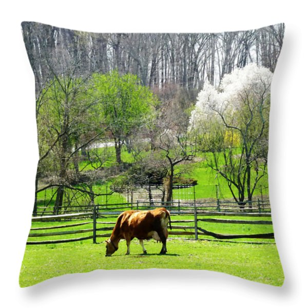 Cow Grazing In Pasture In Spring Throw Pillow by Susan Savad