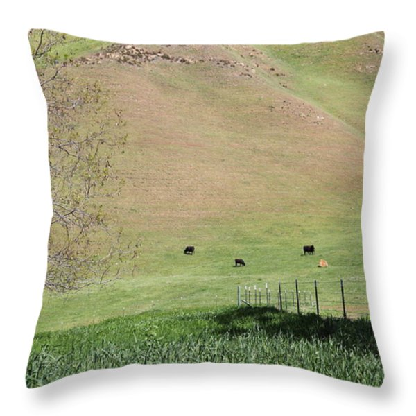 Cows Along The Rolling Hills Landscape of The Black Diamond Mines in Antioch California 5D22319 Throw Pillow by Wingsdomain Art and Photography