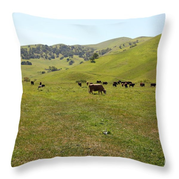 Cows Along The Rolling Hills Landscape of The Black Diamond Mines in Antioch California 5D22327 Throw Pillow by Wingsdomain Art and Photography