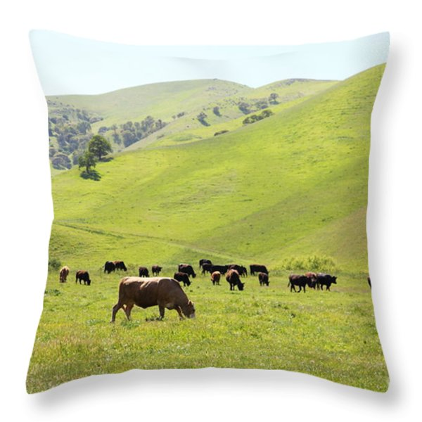 Cows Along The Rolling Hills Landscape of The Black Diamond Mines in Antioch California 5D22328 Throw Pillow by Wingsdomain Art and Photography