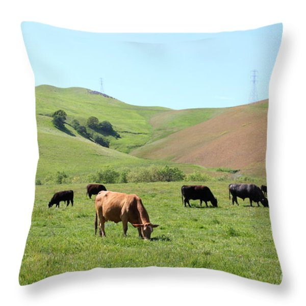 Cows Along The Rolling Hills Landscape of The Black Diamond Mines in Antioch California 5D22355 Throw Pillow by Wingsdomain Art and Photography