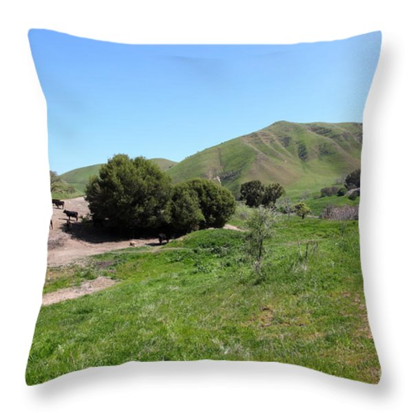 Cows Along The Rolling Landscapes of The Black Diamond Mines in Antioch California 5D22291 Throw Pillow by Wingsdomain Art and Photography