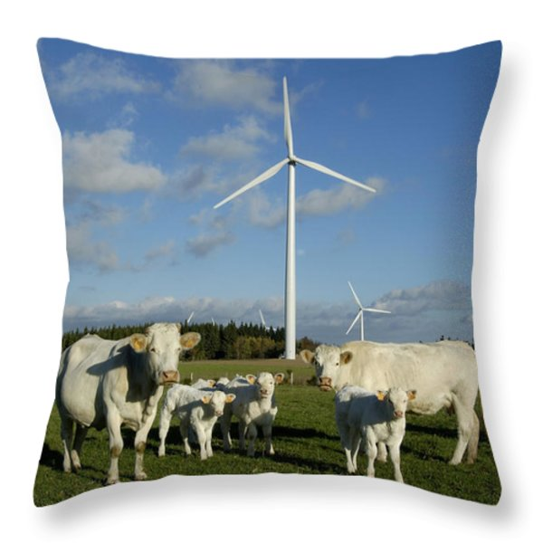 Cows and windturbines Throw Pillow by BERNARD JAUBERT