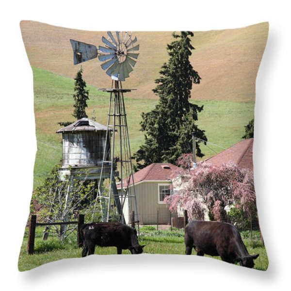 Cows Home On The Ranch At The Black Diamond Mines in Antioch California 5D22354 Throw Pillow by Wingsdomain Art and Photography