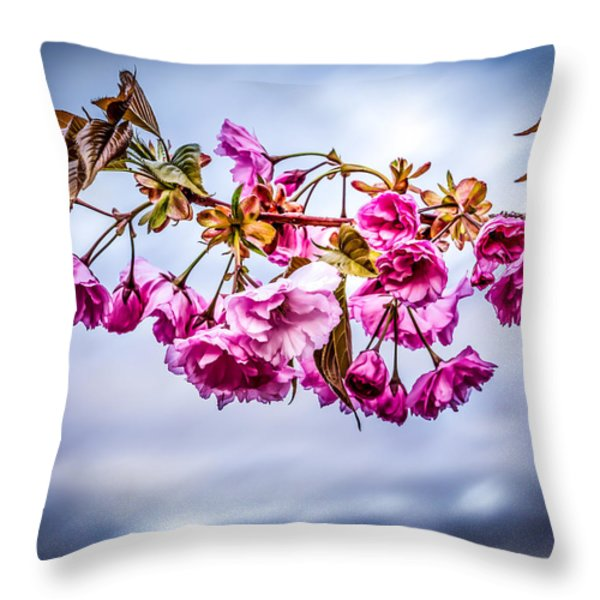 Crab Apple Tree Throw Pillow by Bob Orsillo