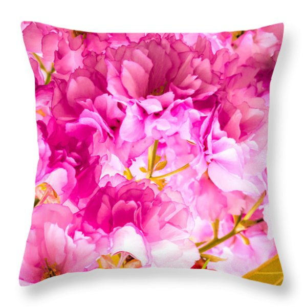 Crabapple Impressions 2 Throw Pillow by Bob Orsillo