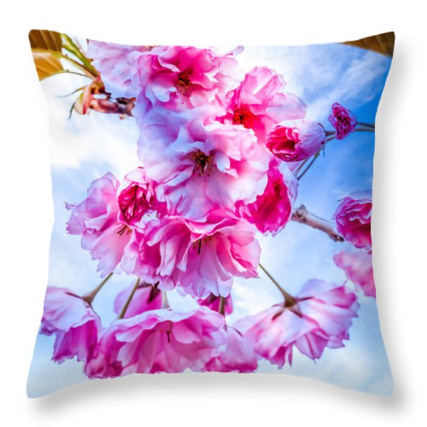 Crabapple Impressions Throw Pillow by Bob Orsillo