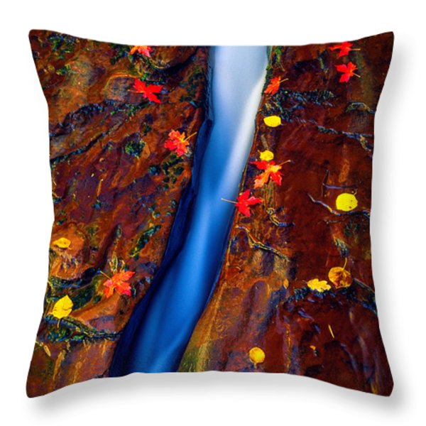 Crack In The Rock Throw Pillow by Inge Johnsson