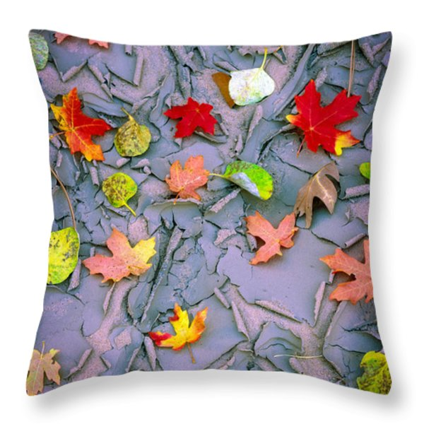 Cracked Mud And Leaves Throw Pillow by Inge Johnsson