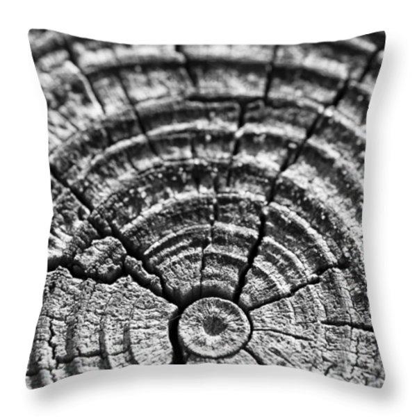 Cracks in Time Throw Pillow by Christi Kraft