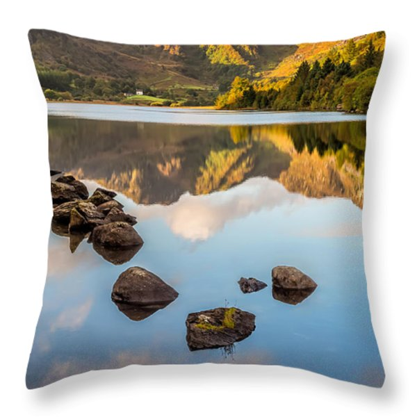 Crafnant Rocks Throw Pillow by Adrian Evans