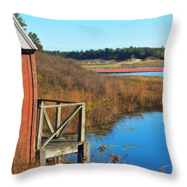Cranberry Harvest  Throw Pillow by Catherine Reusch  Daley