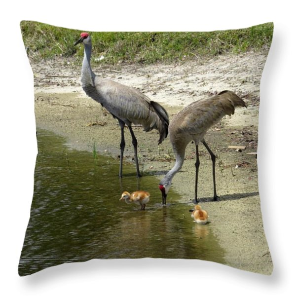 Cranes in the lake Throw Pillow by Zina Stromberg