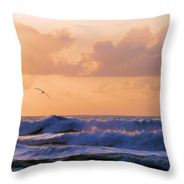 Crash Throw Pillow by JC Findley