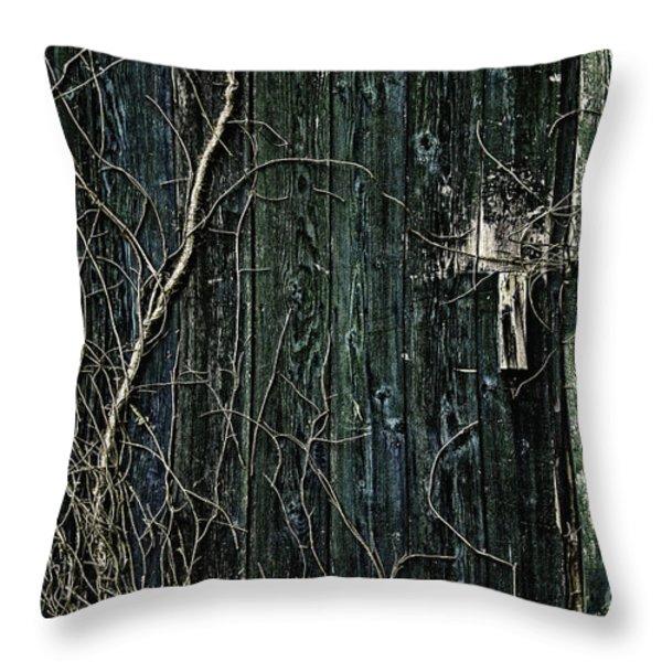 Creeper Throw Pillow by Andrew Paranavitana