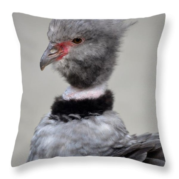 Crested Screamer Throw Pillow by Richard Bryce and Family