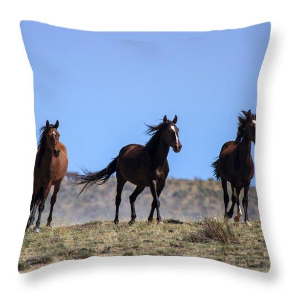 Cresting The Ridge Throw Pillow by Mike  Dawson