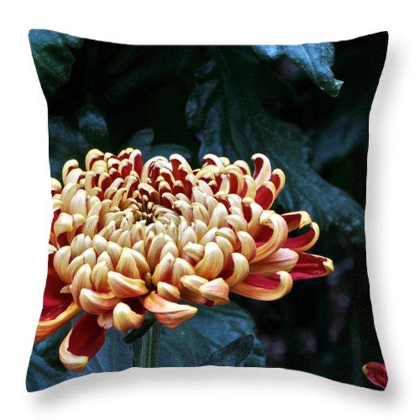 Crimson Tide Irregular Incurve Mum Throw Pillow by Byron Varvarigos