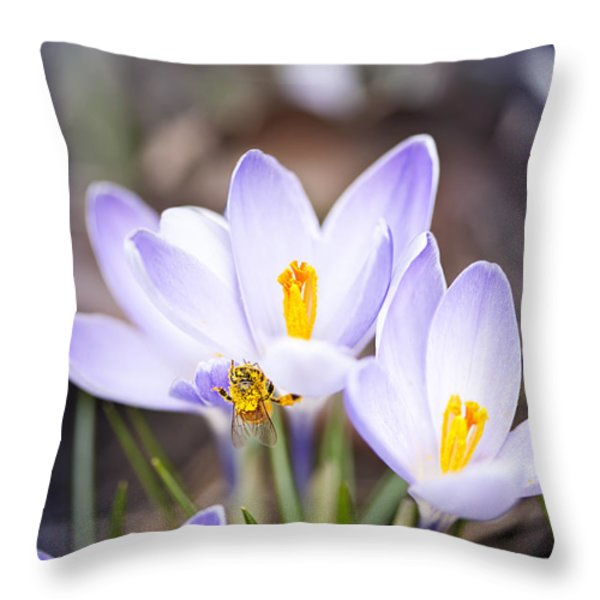 Crocus Flowers And Bee Throw Pillow by Elena Elisseeva