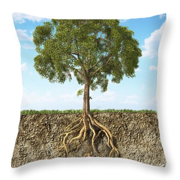 Cross Section Of Soil Showing A Tree Throw Pillow by Leonello Calvetti