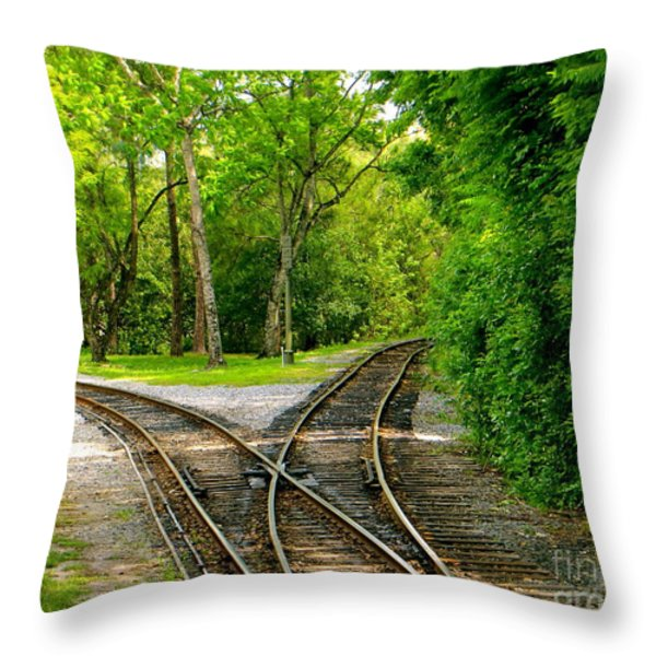 Crossing the LInes Throw Pillow by Joy Hardee